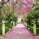 Ibleo Garden in Ragusa Ibla