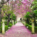 Giardino Ibleo a Ragusa Ibla